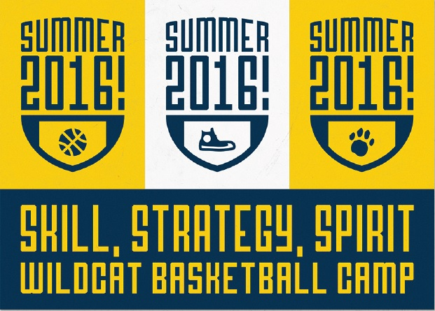 Summer Camp 2016 Promo Card - Basketball Camp