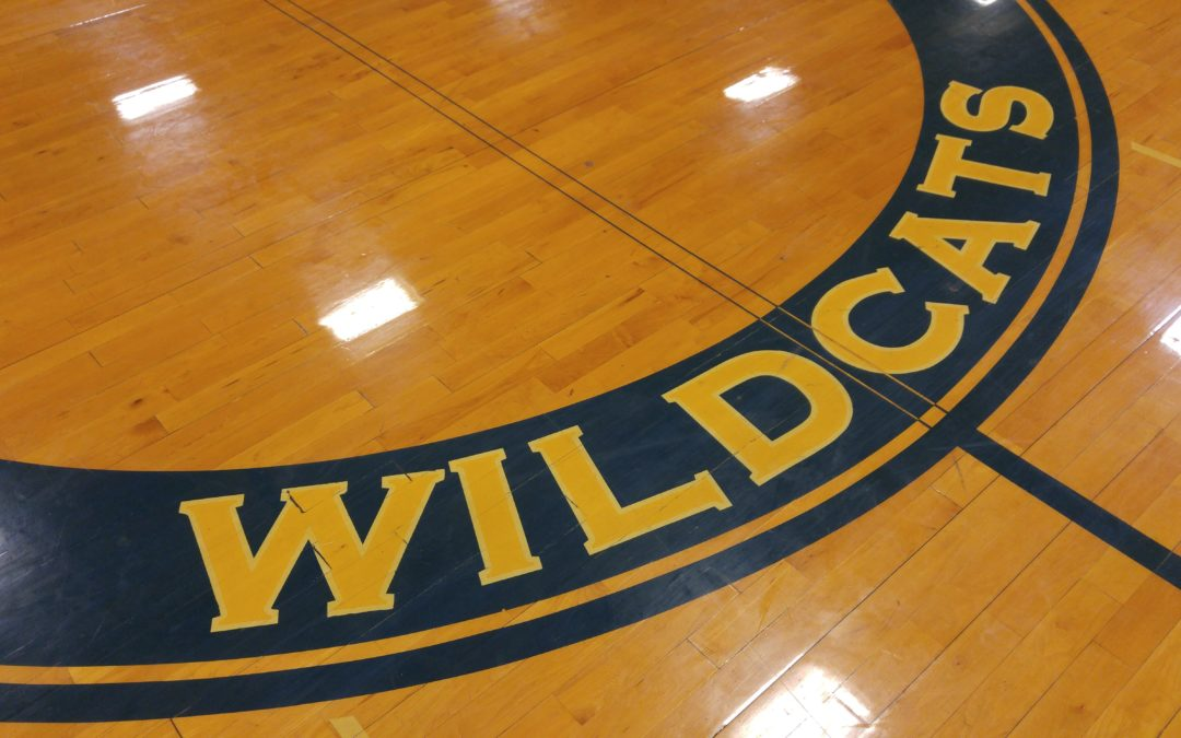 "Wildcats have ""banner week"" in athletic, robotics, academic competition"